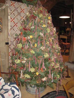 Christmas 2011_13